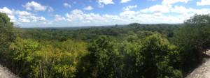 05 fev Tikal panoramic 1