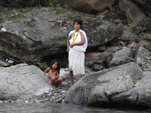 le courant est fort et la maman ne sait pas comment traverser la rivière avec son enfant
