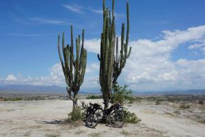 07 jv 2019 Desierto La Tatacoa 9 B