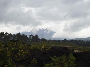 en arrière plan le Cotopaxi