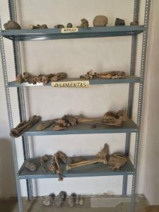 26 mars 2019 Mollepata musée  104 B (Large)
