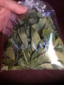 Sachet de feuilles de coca