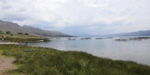 lagune Languilayo - élevage de truites pour exportation vers le Japon, entre autre