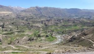 vallée del Colca
