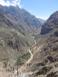 mon excursion de 2 jours 1nuitt au canyon del Colca, seule, Mauryzio y étant déjà venu